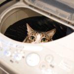 洗濯機の準備・水抜きについて