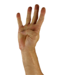 引越し費用相場は?【東京~岩手(盛岡)】|費用を安くするの4つの方法とおすすめ業者をチェック!